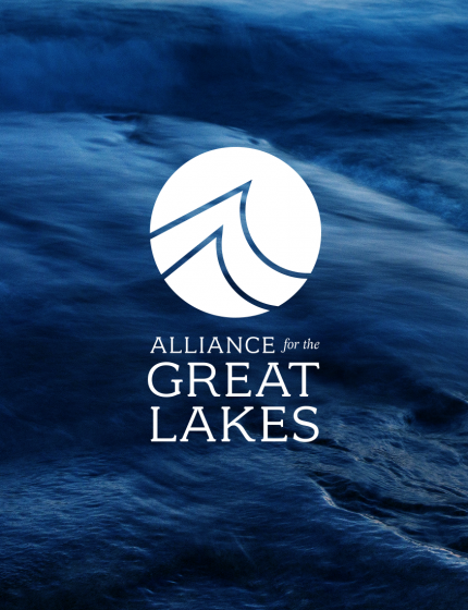 Acquisition Strategy and Communication Design for Great Lakes Protectors