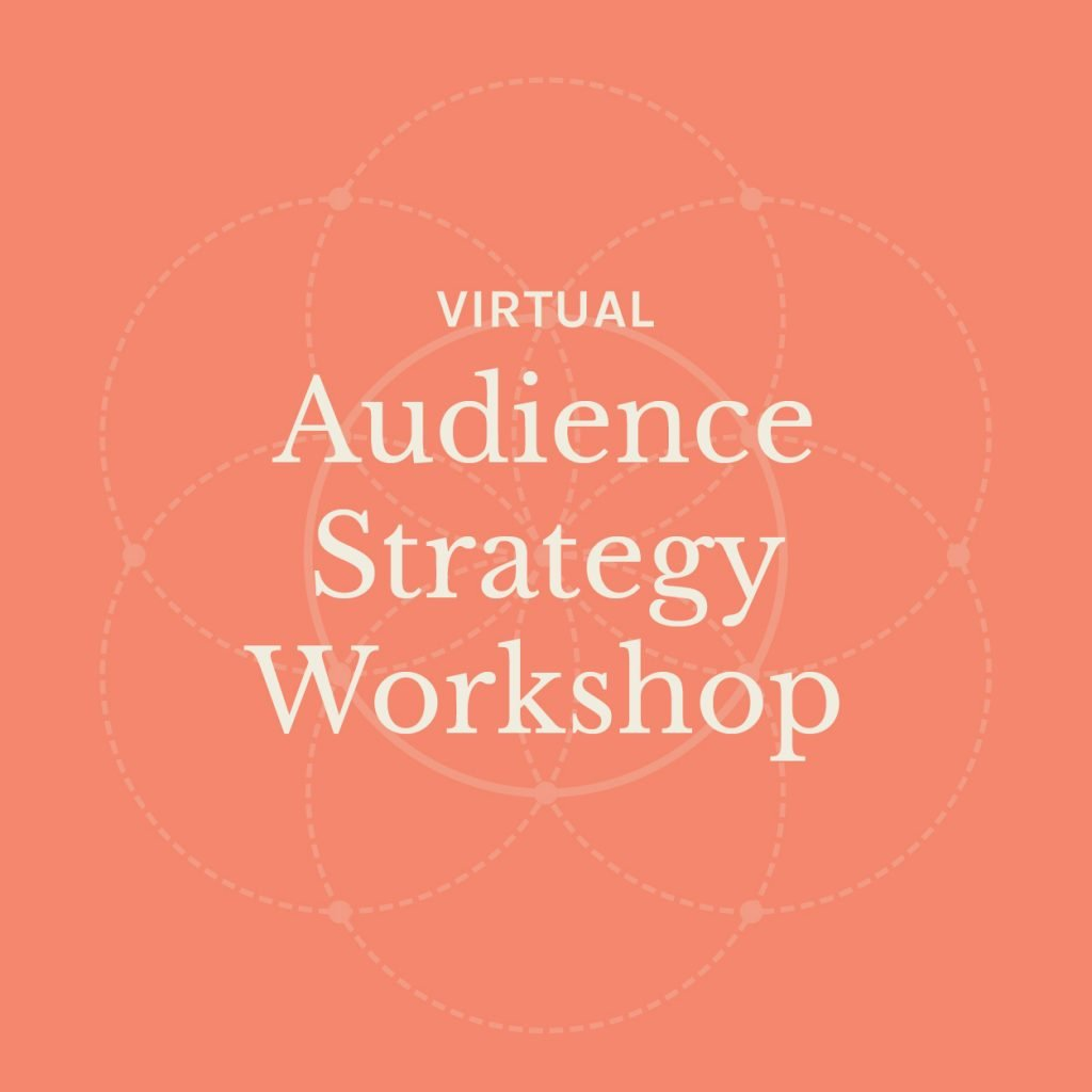 audience strategy workshop